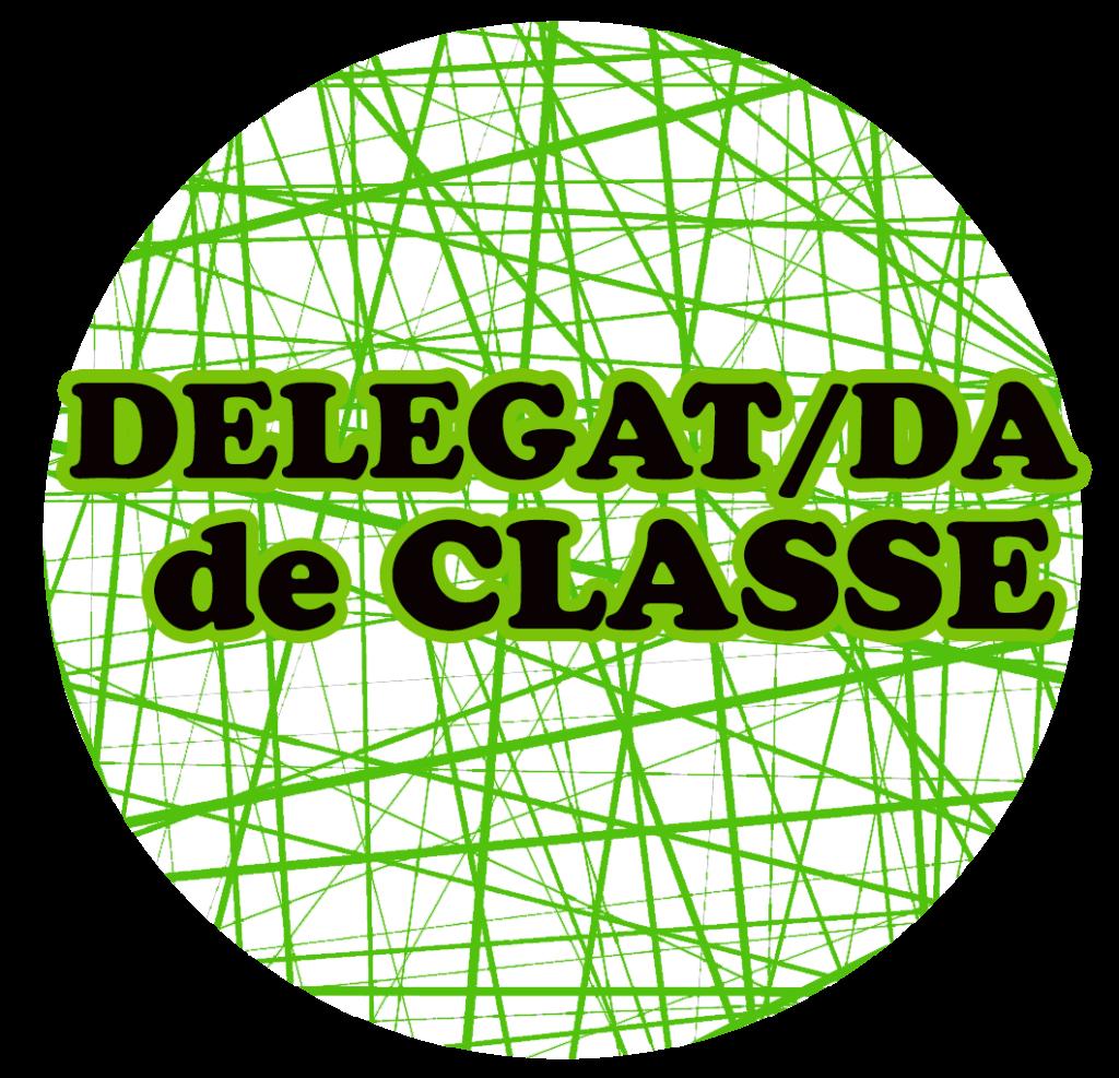 w_logo DELEGAT DE CLASSE